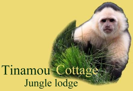 Logo Tinamou Cottage deluxe Jungle Lodge, Boquete, Panama